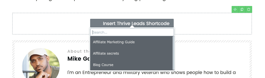 thrive leads example